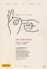 Plakat filmu To właśnie seks
