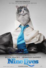 Plakat filmu Jak zostać kotem